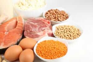 Kraftsport-Baics: Protein